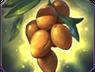 108px-Mango_tree